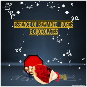 Essence-of-Romance---Roses-