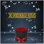 Large-Bunch-of-20-DozenRed-Roses