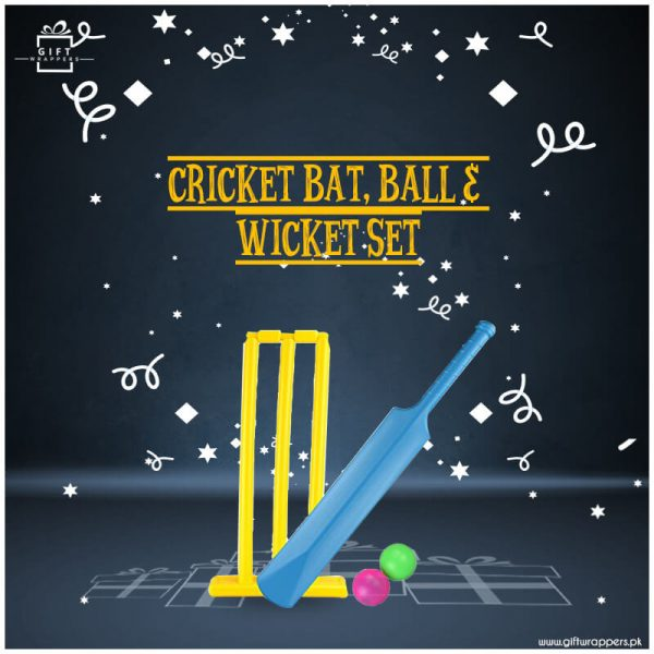 CricketBatBall