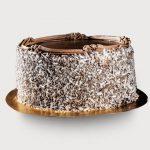 Lamington-Cake