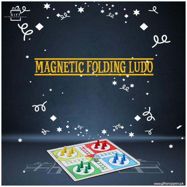 Magnetic Ludo