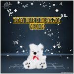 Teddy-Bear-12-inches-ziqi—(Medium)