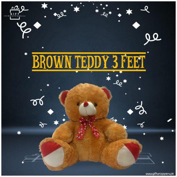 brown teddy feet